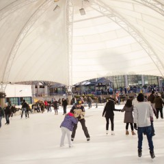 UM-Flint ice rink had an great first winter