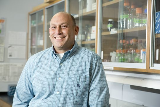 Dennis Viele has been honored as the 2016-17 Collegiate Lecturer award recipient.