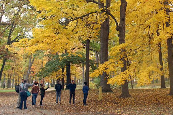 Students at Max Brandon Park