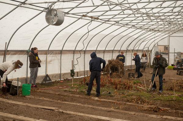 UM-Flint clean a hoop house at an urban farm in Flint.