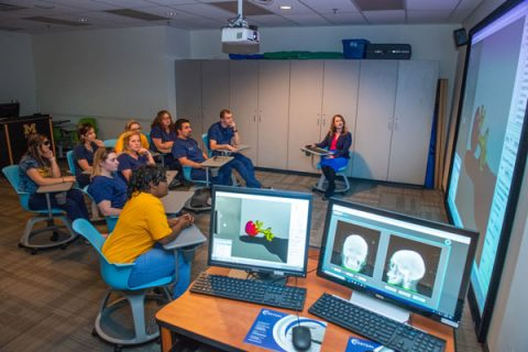 UM-Flint currently has the only VERT (Virtual Environment Radiotherapy Trainer) in Michigan.