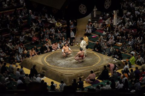Photo of sumo match by UM-Flint MBA student Nick Looney