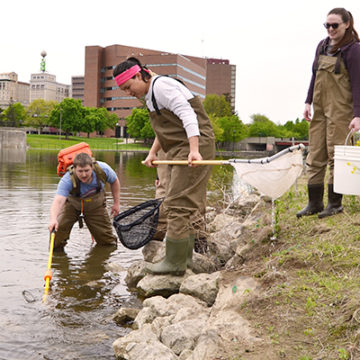 Gone fishing: Hamilton Dam removal offers research opportunities for wildlife biology