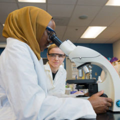 UM-Flint students conducting lab research