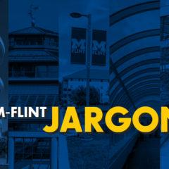 Header image UM-Flint jargon